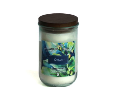 Ocean Coconut Wax Candle